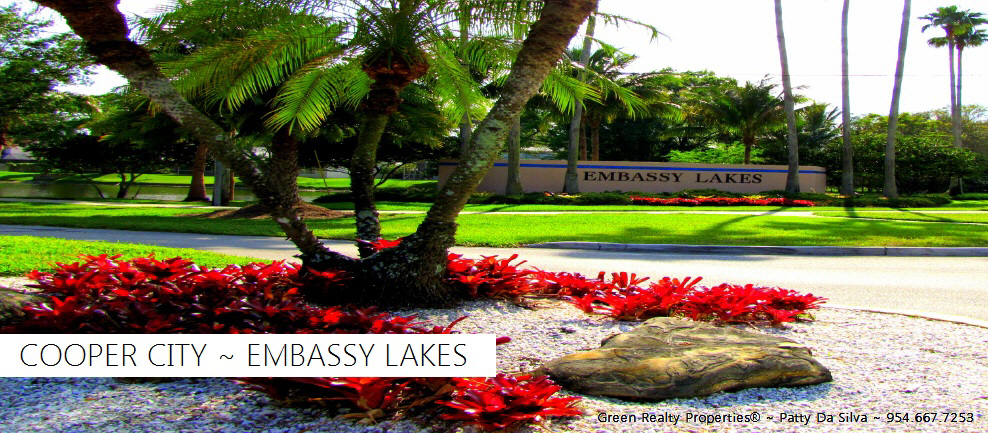 Embassy Lakes Homes For Sale | Embassy Lakes Real Estate Search MLS